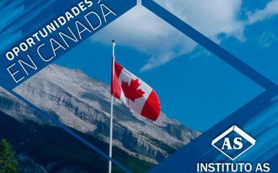 Estudia y trabaja en Quebec